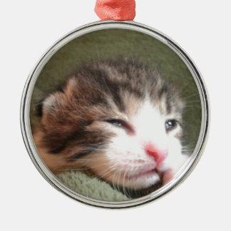 Gatito oscuro del calicó adorno navideño redondo de metal