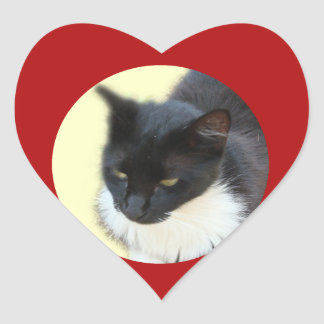 Gatito pensativo pegatina en forma de corazón