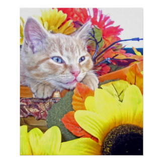 Gatito perdido en pensamiento, flores del gato del impresiones