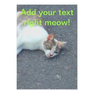 """Gatito perezoso de la siesta de la calle invitación 5"""" x 7"""""""