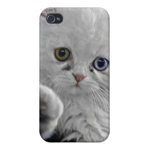 Gatito persa blanco con un ojo azul y verde iPhone 4 carcasas