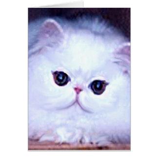 Gatito persa blanco del gatito del gato tarjeta pequeña