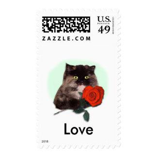 Gatito persa con el rosa sello