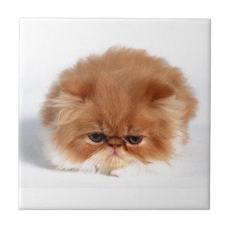 Gatito persa enojado de la bola del soplo azulejo cuadrado pequeño