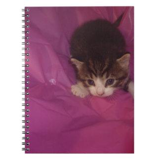 Gatito precioso libreta espiral