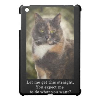 ¿Gatito presumido - qué usted quieren?