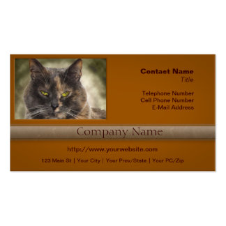 ¿Gatito presumido - qué usted quieren? Plantilla De Tarjeta Personal