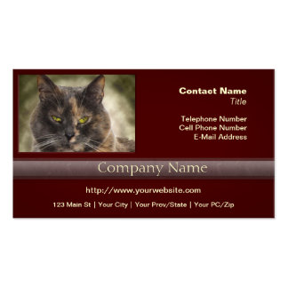 ¿Gatito presumido - qué usted quieren? Tarjetas De Negocios
