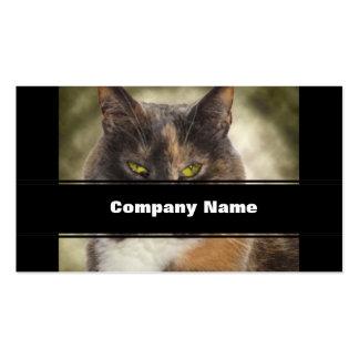 ¿Gatito presumido - qué usted quieren? Tarjetas De Visita