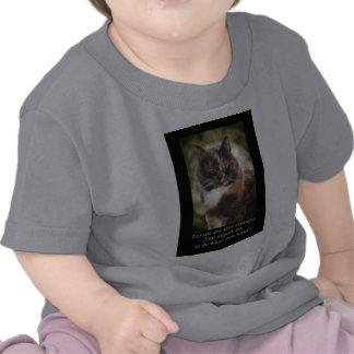 ¿Gatito presumido - qué usted quieren Camiseta