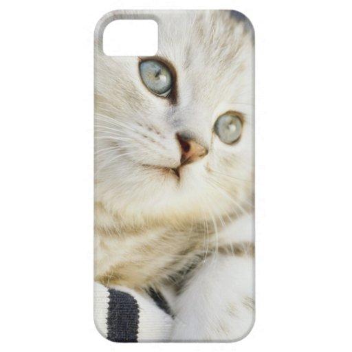 Gatito, primer 2 iPhone 5 Case-Mate cobertura