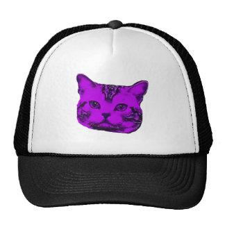 Gatito púrpura gorras de camionero