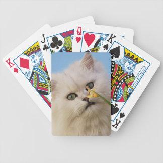 Gatito que ama el narciso baraja de cartas