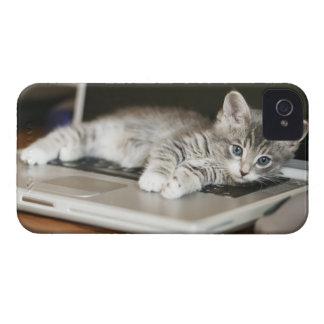 Gatito que descansa sobre el ordenador portátil iPhone 4 Case-Mate funda