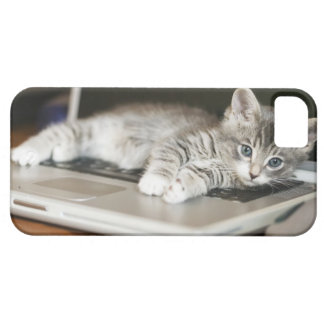 Gatito que descansa sobre el ordenador portátil iPhone 5 Case-Mate cobertura