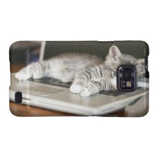 Gatito que descansa sobre el ordenador portátil samsung galaxy SII carcasa