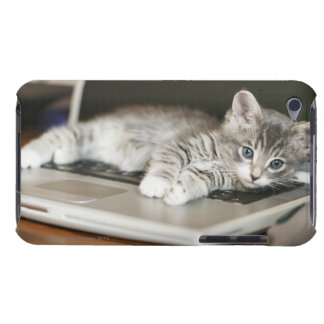 Gatito que descansa sobre el ordenador portátil Case-Mate iPod touch cobertura