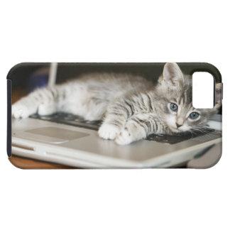 Gatito que descansa sobre el ordenador portátil iPhone 5 carcasa
