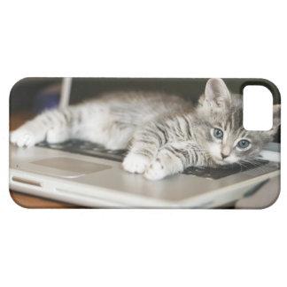 Gatito que descansa sobre el ordenador portátil iPhone 5 Case-Mate cárcasas