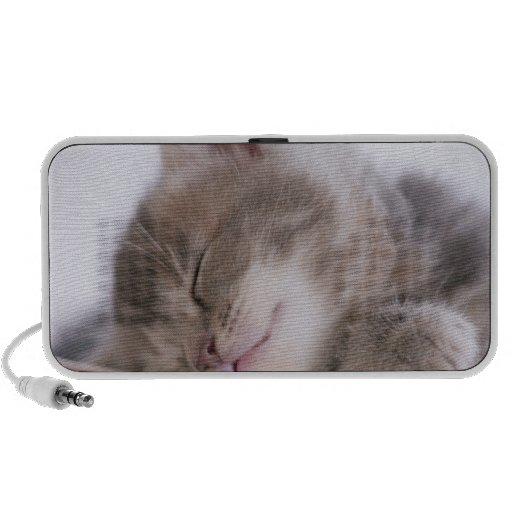 Gatito que duerme en el cuenco 2 altavoces de viajar