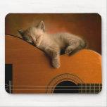 Gatito que duerme en la guitarra Mousepad Alfombrillas De Raton
