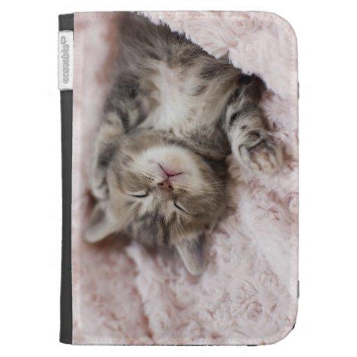 Gatito que duerme en la toalla