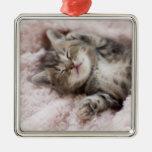 Gatito que duerme en la toalla adorno de navidad
