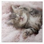 Gatito que duerme en la toalla azulejos cerámicos