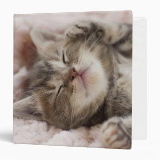 """Gatito que duerme en la toalla carpeta 1 1/2"""""""
