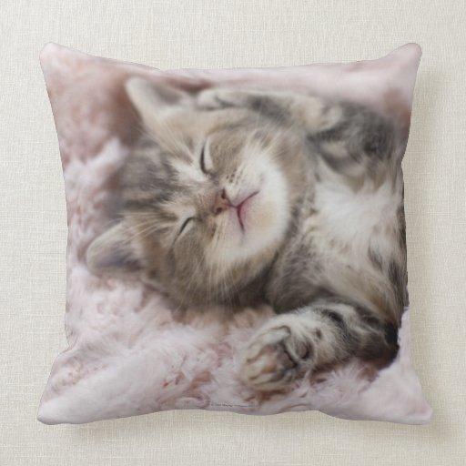 Gatito que duerme en la toalla cojines