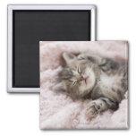 Gatito que duerme en la toalla imán cuadrado