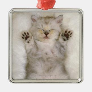 Gatito que duerme en una alfombra mullida blanca,  adornos de navidad