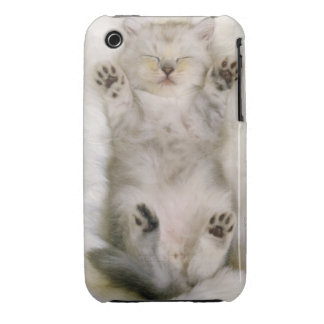 Gatito que duerme en una alfombra mullida blanca, iPhone 3 Case-Mate coberturas