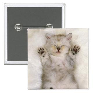 Gatito que duerme en una alfombra mullida blanca pins