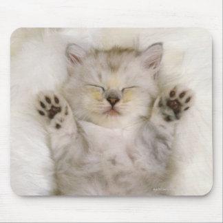 Gatito que duerme en una alfombra mullida blanca alfombrillas de raton