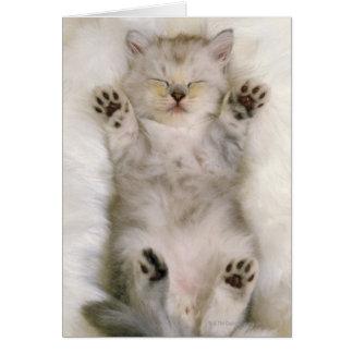 Gatito que duerme en una alfombra mullida blanca,  tarjeta de felicitación