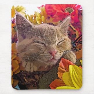 Gatito que duerme, girasoles bonitos del gato del  alfombrillas de raton