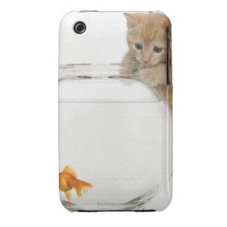 Gatito que intenta conseguir en un goldfish iPhone 3 Case-Mate protectores