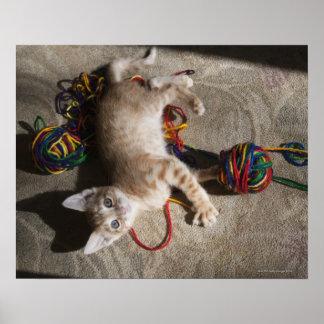 Gatito que juega con hilado poster