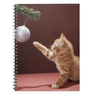 Gatito que juega con la chuchería del navidad en libretas