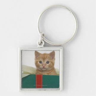 Gatito que mira a escondidas de la caja de regalo llavero cuadrado plateado