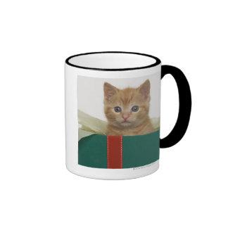 Gatito que mira a escondidas de la caja de regalo taza de dos colores