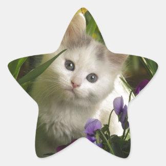 Gatito que mira furtivamente pegatina en forma de estrella