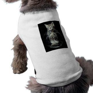 Gatito que mira hacia fuera camiseta de perrito