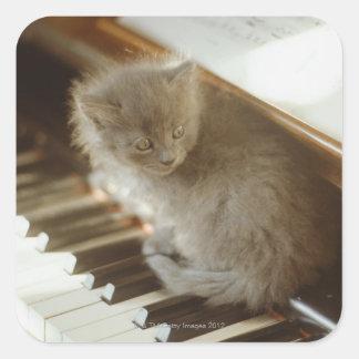 Gatito que se sienta en el teclado de piano, pegatina cuadrada