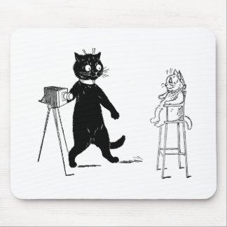 Gatito que se sienta para el retrato tapete de ratón