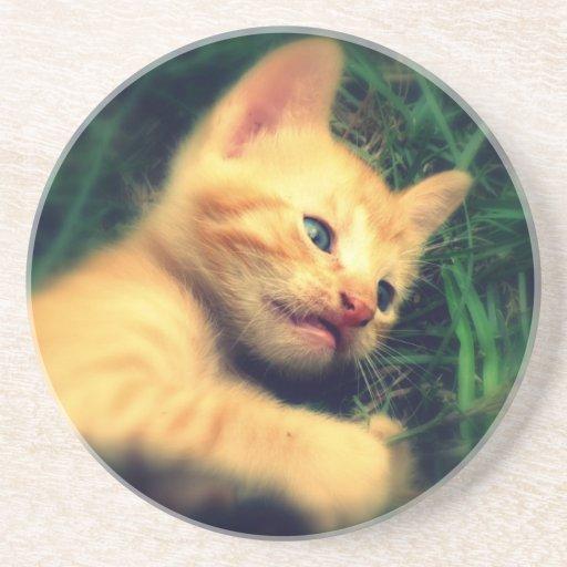 Gatito rayado amarillo adorable posavasos diseño