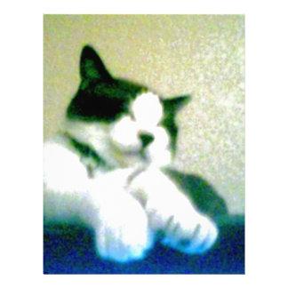 gatito reclinado lindo de 001 (1).jpg membrete a diseño