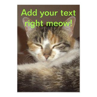 Gatito relajado comunicado personal
