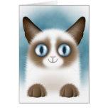 Gatito siamés curioso tarjetas